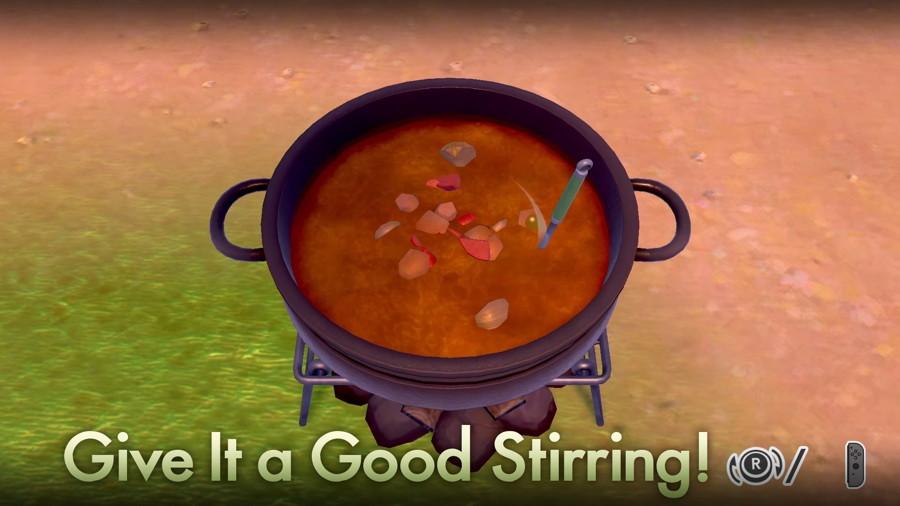 Pokemon Sword Shield Curry Rice